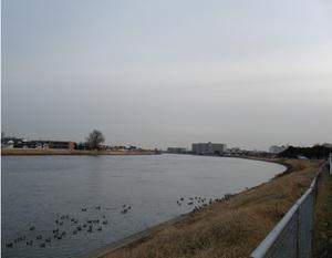 20110106_1